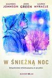 Książka W śnieżną noc