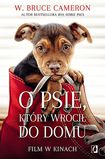 Książka O psie, który wrócił do domu