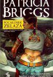 Książka Pocałunek żelaza
