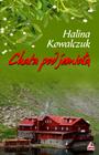 Książka Chata pod jemiołą