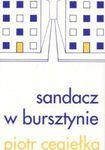 Książka Sandacz w bursztynie