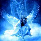 Avatar @cyrysia