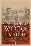 Książka Woda na sicie. Apokryf czarownicy