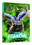 Książka Atlas ptaków. 250 polskich gatunków