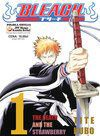 Bleach 1 - The Death And The Strawberry